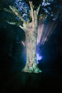 Azoth Tree in Berlin (Fotos: Max Hartmann/UrbanScreen)